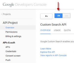 Google Developer Console