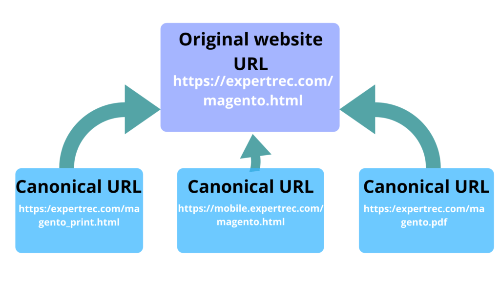 How to add canonical URL in magento 2