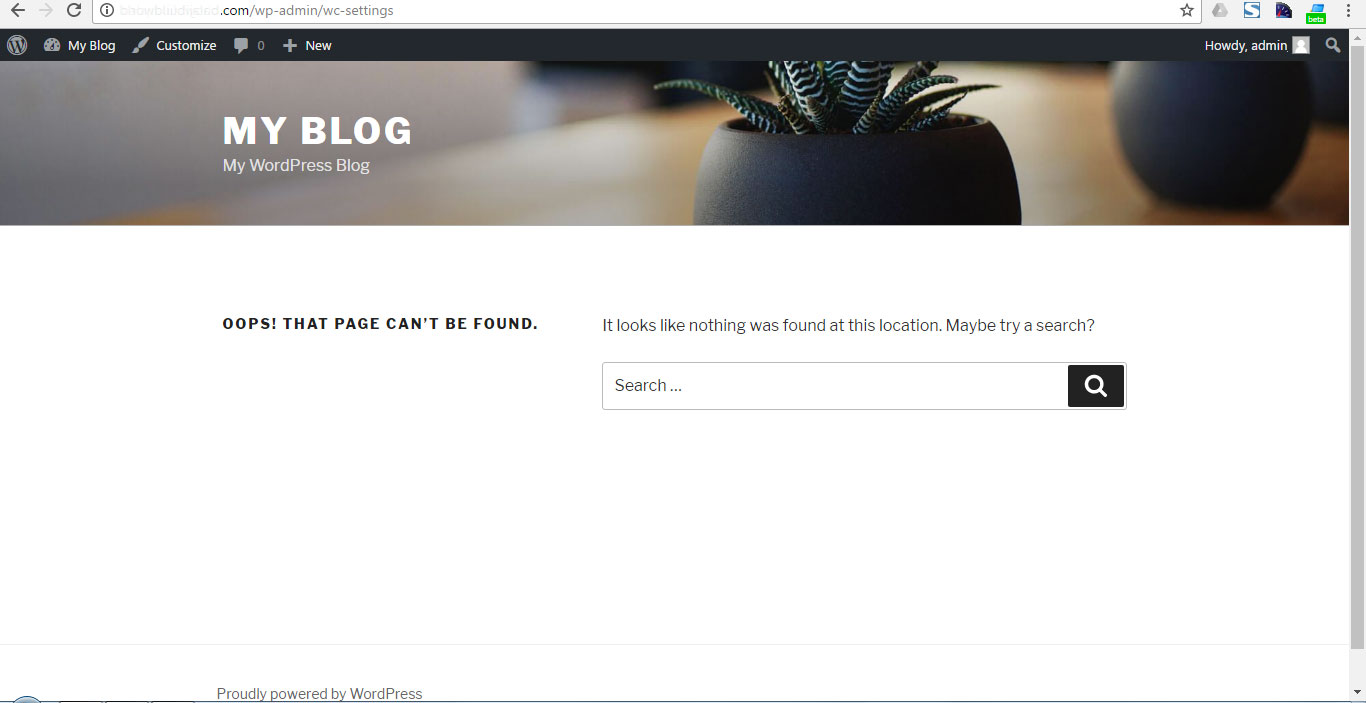 Page not found WordPress