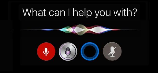 Voice Google