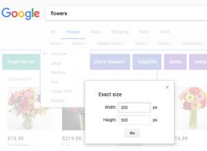 google images exact size broken