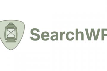 WP search plugin