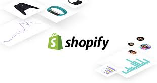 Feature - Shopify search box