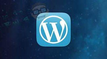 Google Custom Search Wordpress