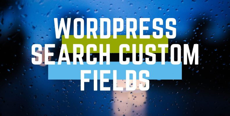 wordpress search custom fields