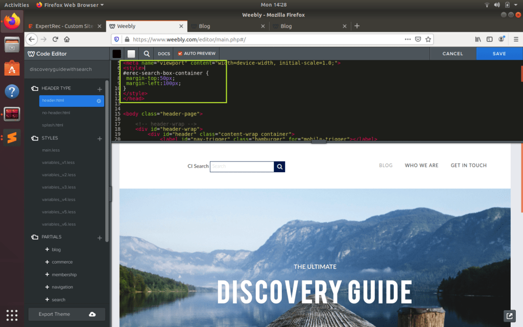 Add custom CSS to expertrec search box