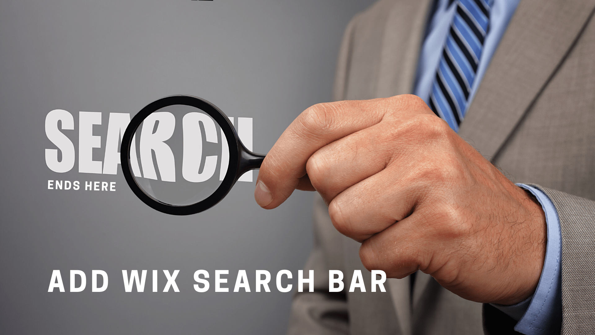 Mini guide on how to add wix search bar in wix site